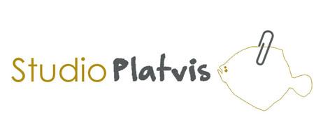 Studio Platvis, Eerste hulp bij kunstopdrachten
